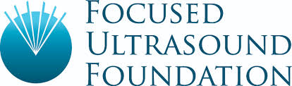 Charles Steger Global Internship Program in Focused Ultrasound